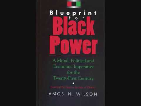 Mhenga Amos N. Wilson: Black Psychology