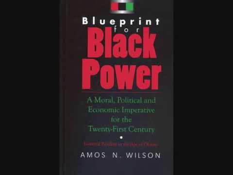 Mhenga Amos N. Wilson: Black Psychology