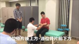 柔道整復師認定実技練習1(鎖骨中・外1/3部骨折)