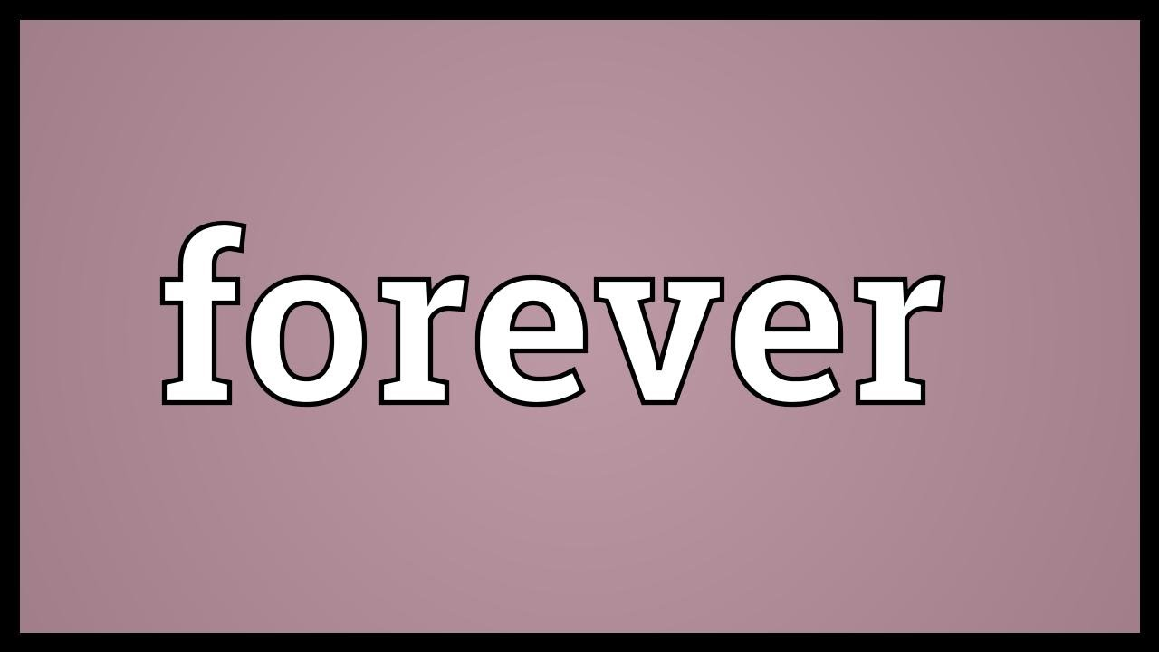 Forever Meaning