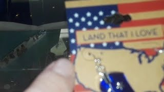 ME Flag Residue 🇺🇸 (Mandela Effect, Earrings)