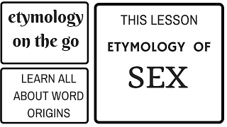 ETYMOLOGY OF SEX - etymology on the go - Best etymology lessons