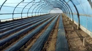 видео: наши теплицы. посев семян на рассаду . подготовка теплиц к посадке