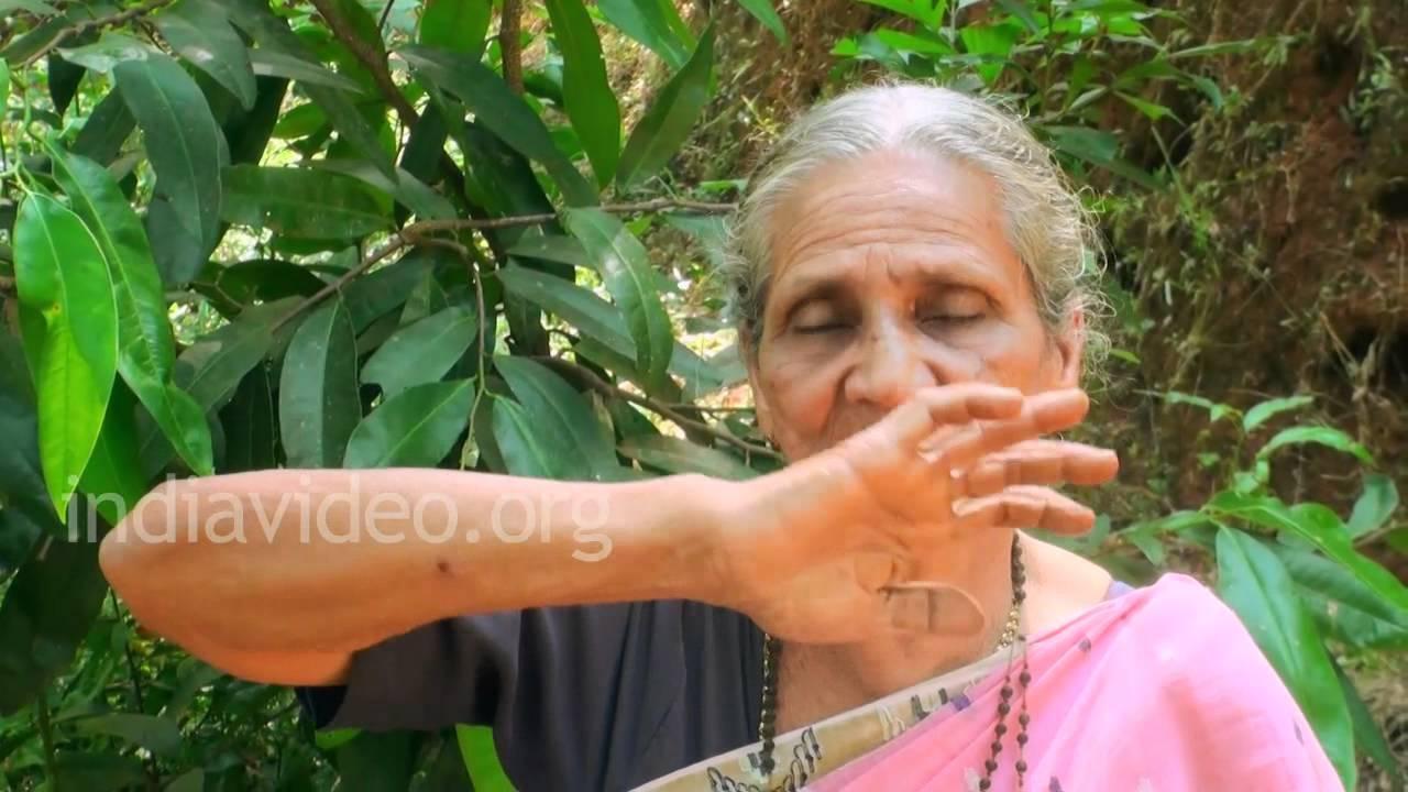 Anti Greying Oil Using Indigo Plant Youtube
