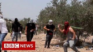 Palestinians and Israelis clash over hillside - BBC News