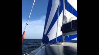 Sailing catamaran SV Flingtime under screecher, Wide Bay to Moreton Island, Queensland, Australia