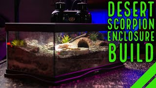 How To Set Up a Scorpion Desert Habitat w/ Zoo Med Cavern Kit Excavator Clay
