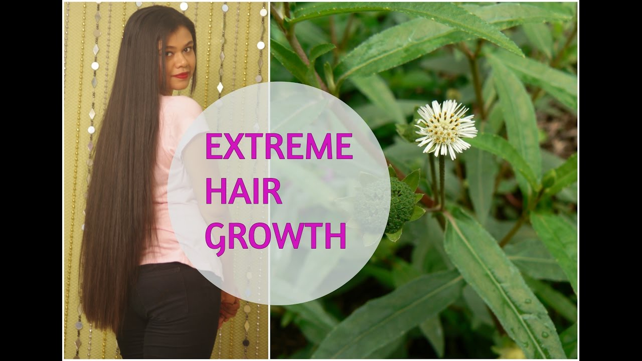 Hair Mask For Extreme Hair Growth Indian Ayurvedic Se