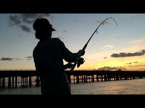 WaterTime Biscayne Bay Tarpon Fishing Video