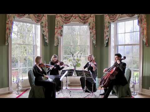 Beethovens 5 Secrets The Piano Guys Wedding String Quartet