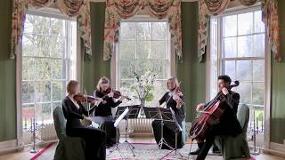 Beethoven's 5 Secrets (The Piano Guys) Wedding String Quartet
