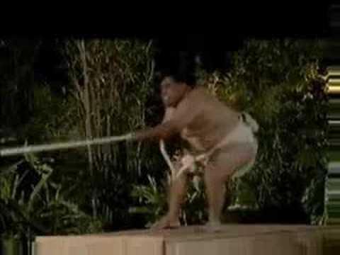 Sumo Wrestler VS. Orangutan