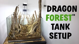 FOREST STYLE AQUARIUM SETUP