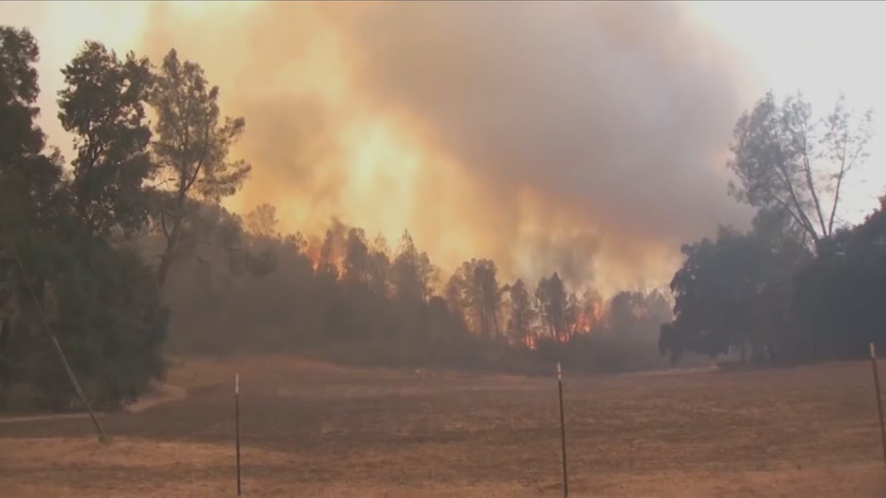 KSEE 24 News Fighting SQF Complex Fire