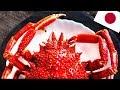 ULTIMATE Japan Crab Guide: TOP 6 Ways to Eat Japanese Crab