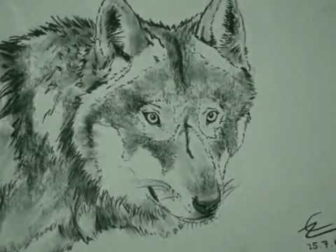 (Wolfs) Zeichnungen 3.0