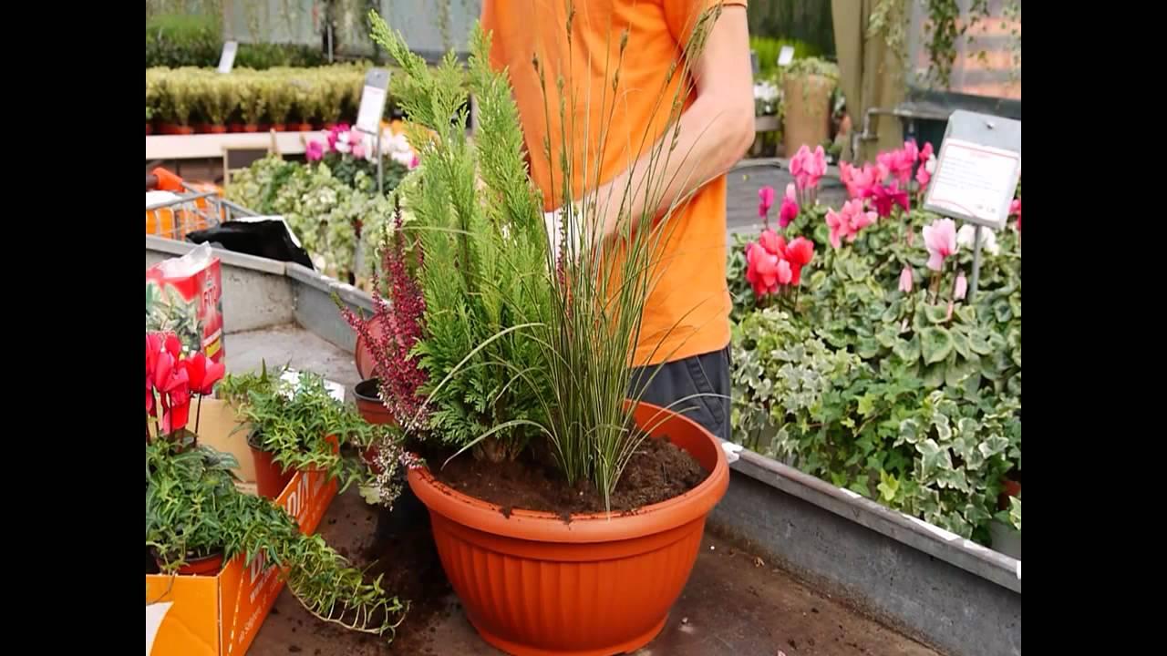 Creare una composizione con fiori e piante autunnali youtube - Composizione giardino ...