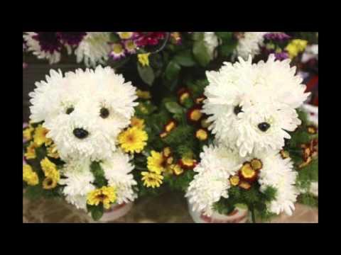 Guillermo Romero - Hoy Te Canto Madre