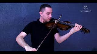 Violino Erudithus VP101H Review