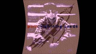 The Lightning Seeds  - Pure [ Acoustic Version ]
