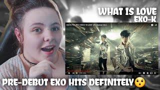 EXO-K 엑소케이 'WHAT IS LOVE' MV (Korean Ver.) | REACTION!!!