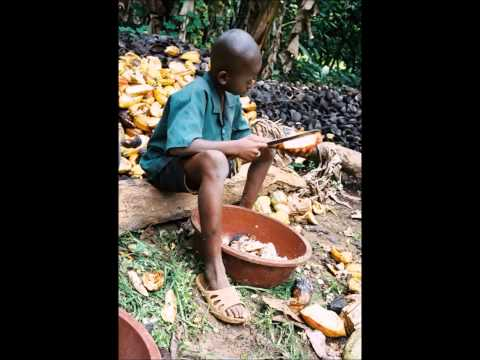 child slavery in cocoa fields by sadie douglas and aisha butler