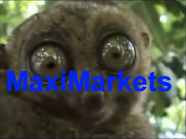 Maximarkets, форекс отзывы, форекс обзор, максимаркетс видео