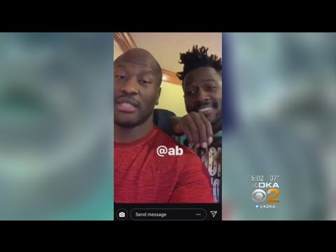Antonio Brown Watches Tomlin News Conference With James Harrison