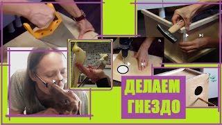 Как сделать гнездовой домик из тонкой фанеры для разведения попугаев корелл дуплянка своими руками