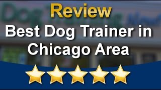 Best Dog Trainer in Chicago Area Schaumburg          Great           5 Star Review by Maddy K.