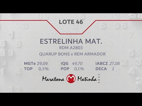 LOTE 46 Maratona Matinha