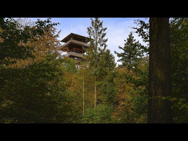 Wieża Widokowa - The Watchtower Guard