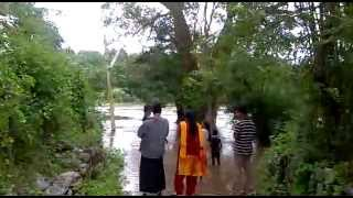 chittur puzha at its highest water level