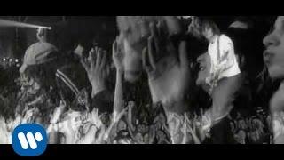 Смотреть клип Ligabue - Sono Qui Per L'Amore