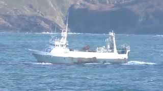 Trawler CHANTEIRO