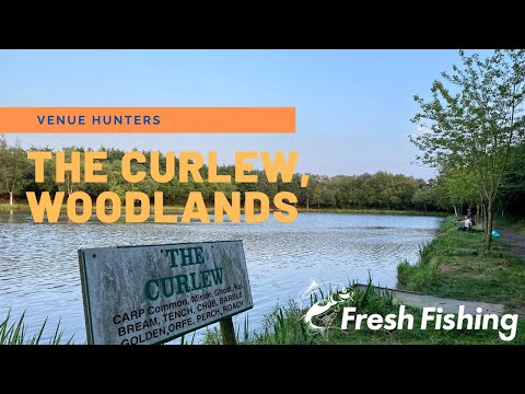Woodlands Fishing Lakes, The Curlew Lake, Thirsk - Coarse Fishing Evening Session