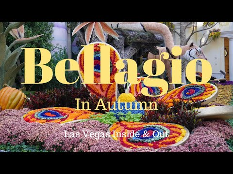 Bellagio In Autumn - It's Indian Summer