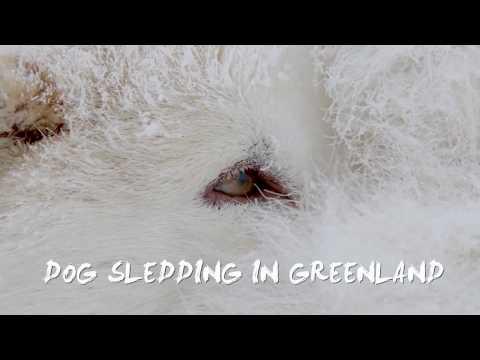 Dog Sledding in Greenland   Original Compositon for Short Movie