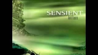sensient - dusty circuit
