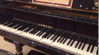 宝塚歌劇団 王妃館 宙組 ピアノ 伴奏。一部だけ…。
