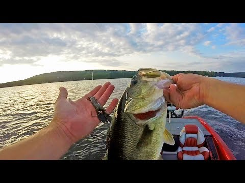 Fishing EEL GRASS & HYRDILLA With A Texas Rig! Lake Guntersville