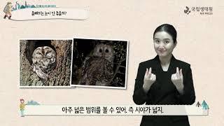 [국립생태원]15 어리석은 자는 독수리의 날개와 올빼미…