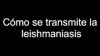 Cómo se transmite la leishmaniasis