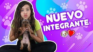 SOY MAMÁ!!! 😱 EL NUEVO INTEGRANTE DE LA FAMILIA STAR 🐶 |  Leyla Star 💫