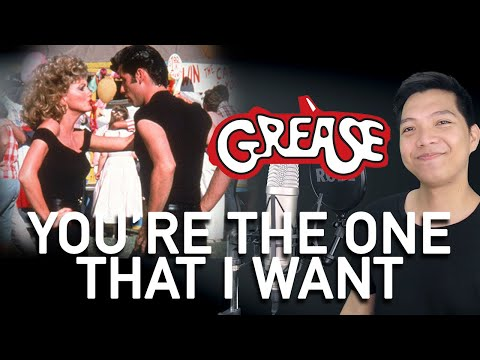 You're The One That I Want (Danny Part Only - Instrumental) - Grease