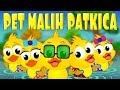 Pet malih patkica - Dječje pjesmice