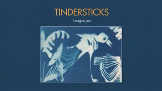 Tindersticks - I imagine You (Official Audio)