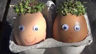 How to make watercress eggheads
