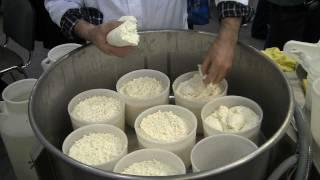 Производство сыра Мастер класс Выставка АгроФерма 2012