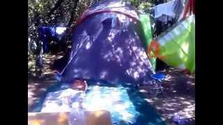 Camping Le Esperidi-Marina di Bibbona-Tuscany-Italy